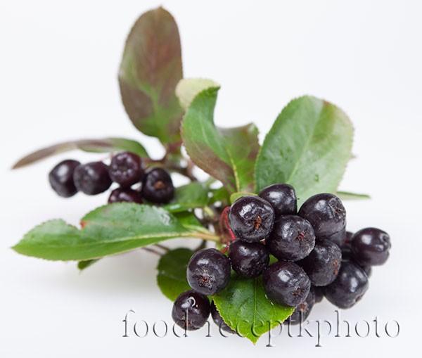 На фото ветка ягод аронии черноплодной