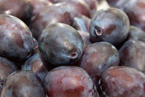 Слива - фрукты