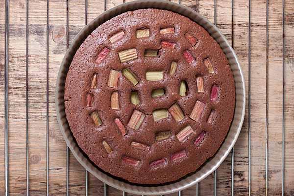 Шоколадный пирог с ревенем